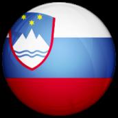 Slovenia Division