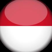 Indonesia Division
